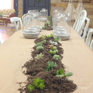 DIY succulent workshop at The Collective lhe +Makery