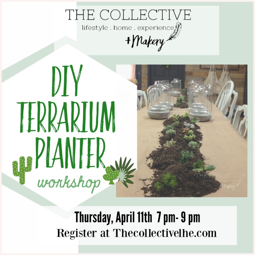 DIY Terrarium PLanter Wokrshop The Collective lhe + Makery in Lisle,IL