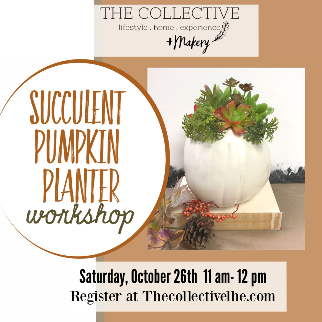 Succulent Pumpkin Planter at The Collective lhe +Makery in Lisle, IL