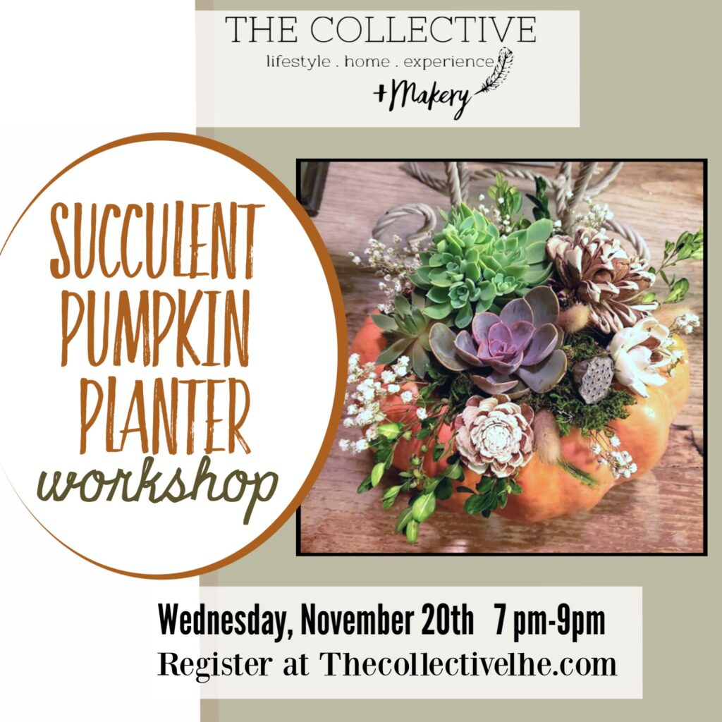 Succulent pumpkin planter at The Collective lhe + Makery in Lisle,IL